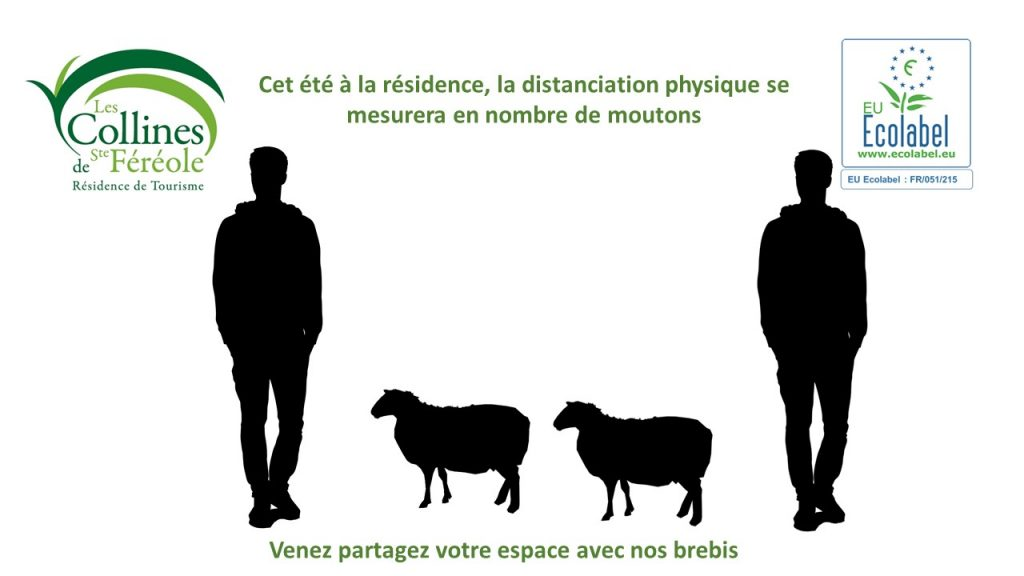 la distanciation physique se mesure en moutons aux Collines